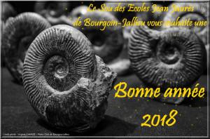 Carte voeux 2018 Sou écoles